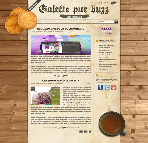 webdeisng blog galette pur buzz